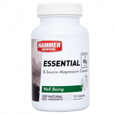 Hammer Essential