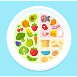 Ernährungsplan Frau Basic