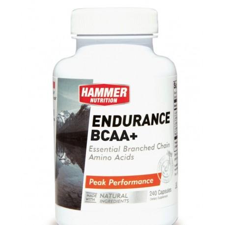 Hammer Amino Endurance