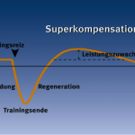 Superkompensation - Trainingseffekt