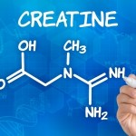 kreatin - wirkung