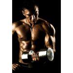 Gewichtszunahme und Muskelaufbau
