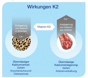 Wirkung Vitamin K2